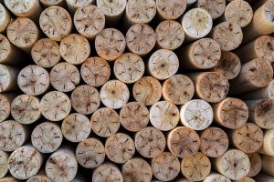 nucleo madera chopo